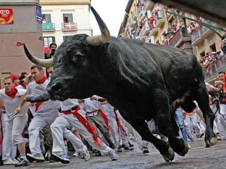 bull-running-festival.jpg